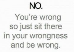 you_are_wrong-300x211