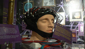 p300 brain waves and deception